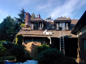 Our crew installing Malarkey's Windsor rubberized shingles